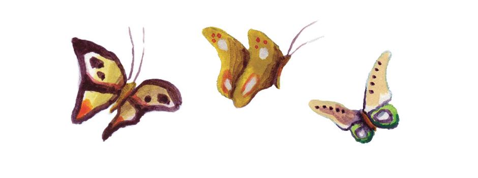 vlinders_githa_vivente